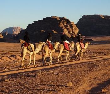 sunrise-camel-ride